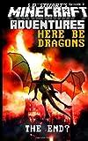 Here Be Dragons: A Minecraft Adventure (Minecraft Adventures) (Volume 4)