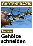Image de Gehölze schneiden - Obstbäume, Laub- und Ziergehölze: Pflege, Instandhaltung, Verjüngung, Form u