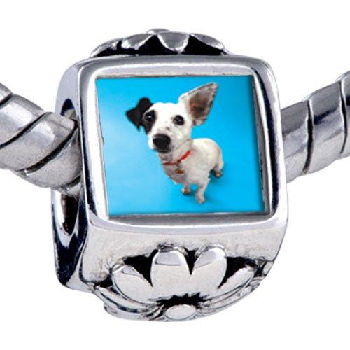 Pugster Bead Parson Russell Terrier Beads Fits Pandora Bracelet