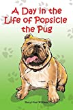 A Day in the Life of Popsicle the Pug