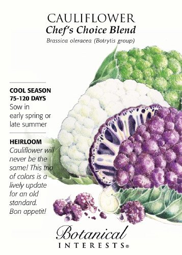 Cauliflower Chef's Choice Blend Heirloom Seeds 100 Seeds