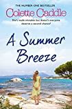 img - for A Summer Breeze book / textbook / text book