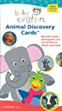 Baby Einstein: Animal Discovery Cards : Beautiful Nature Photographs and Animal Facts to Delight Your Baby