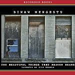 The Beautiful Things That Heaven Bears | Dinaw Mengestu