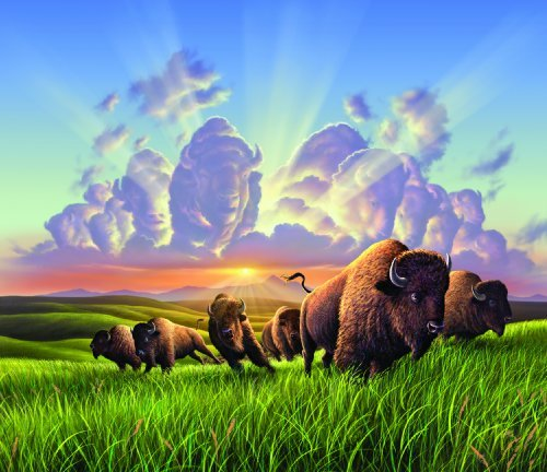 Cheap SunsOut Bison 550pc Jigsaw Puzzle by Jerry LoFaro (B004HSBX48)