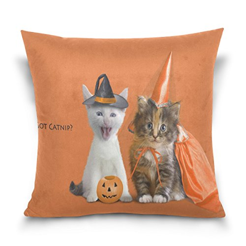 [ablink Funny Halloween COT CATNIP£¿ Custom Design Personalized Pillowcase Pillow Sham Queen Size Pillow Cushion Case Cover Two Sides] (Free Halloween Word Search)