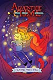 Top Graphic Novels for May 2013