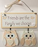 Owl Wooden Heart Plaque Friends Are The Family We Choose