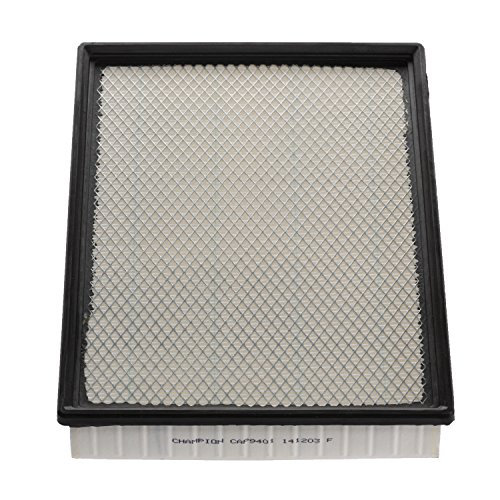 Champion CAP9401 Panel Air Filter