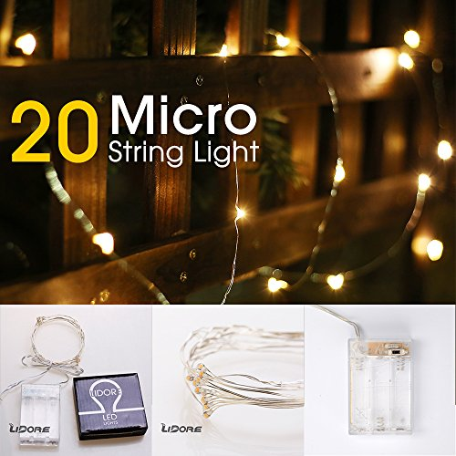 LIDORE Micro LED 20 Warm White Lights with Timer, Battery Operated on 7.87ft Long Silver Color Ultra Thin Copper Wire