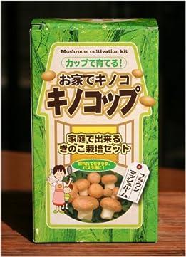 お家でキノコ キノコップ (ブラウンマッシュルーム)