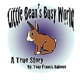 Little Bean's Busy World