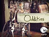 Oddities: A Bug's Afterlife