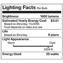 OttLite 25ED12R 25w Edison CFL Swirl Bulb