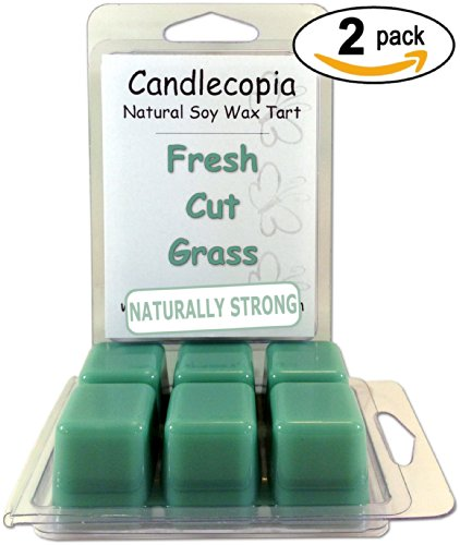 Candlecopia Fresh Cut Grass 6.4 Oz Scented Wax Melts - The Wonderful Fresh Aroma Of Freshly Cut Green Grass - 2-Pack Of Naturally Strong Scented Soy Wax Cubes Throw 50+ Hours Of Fragrance When Melted In Scentsy®, Yankee Candle® Or Standard Electric Tart W