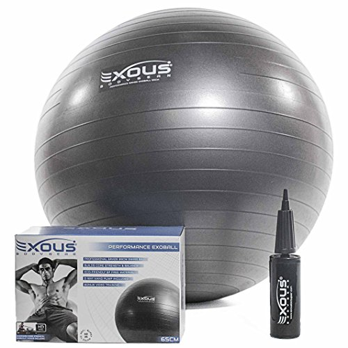Exercise Fitness Yoga Core Stability Balance Ball 65cm Anti Burst With Professional Online Videos 2-way-pump For Core Stability, Abdominal, Pilates Training Birthing Ball & Pregnancy Use Non Slip Grip