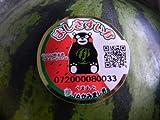 フルーツyamakiti 1番成り 熊本産 西瓜 1玉 2.5〜3キロサイズ