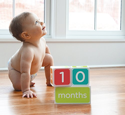 Pearhead Baby Age Blocks, Neutral