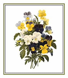 Pansy Bouquet Flower Illustration Counted Cross Stitch Chart/Graph Pierre-Joseph Redoute's