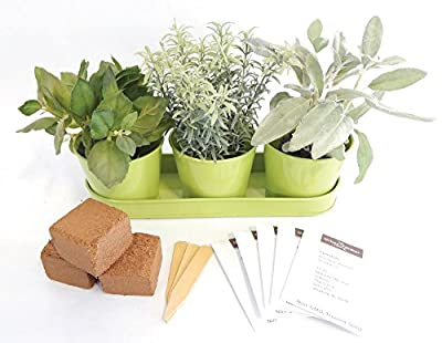 Herb Garden Kit - Round Metal Windowsill Planters