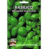 Vivai Le Georgiche Basilico Italiano Classico - Genovese (Semente)