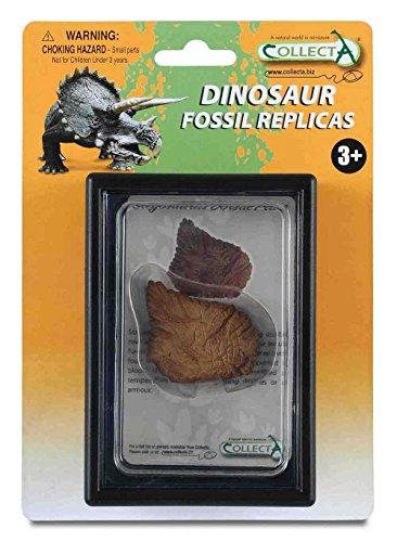 CollectA Dorsal Plate of Stegosaurus Box Set