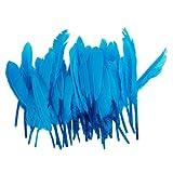 50pcs Home Decor Blue Goose Feather