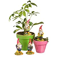 Pack of 12 From the Forest Mini Garden Outdoor Gnome Statuary 5.25