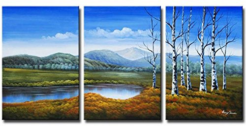 Cherish Art Hand Painted Oil Paintings Forest Glassland Beautiful Natural Landscape Wood Framed 3-Piece Wall Decoration