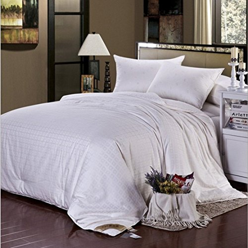 Soft Silker Silk Comforter 100% All Natural National Standard Long Mulberry Silk Duvet Queen (Most Wished &Gift Ideas)