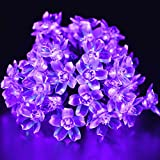 lederTEK Solar Fairy String Lights 21ft 50 LED Purple Blossom Decorative Gardens, Lawn, Patio, Christmas Trees, Weddings, Parties, Indoor and Outdoor Use (50 LED Purple)