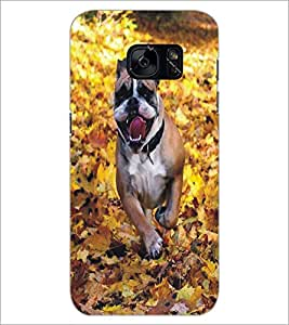 PrintDhaba Dog D-5371 Back Case Cover for SAMSUNG GALAXY S7 (Multi-Coloured)