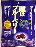 川口製菓 瞳はブルーベリー 100g×10袋