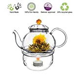 Blooming Tea Glass Teapot Gift Set Amber Juliet, 20oz/590ml with Glass Tea Warmer Cozy Non Drip & Lead Free