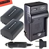 BM Premium Pack of 2 NP-FV50 Batteries And Battery Charger for Sony HDR-CX220, HDR-CX230, HDR-CX290, HDR-CX330, HDR-CX380, HDR-CX430V, HDR-CX900, TD30V, HDR-CX260V, HDR-CX580V, HDR-CX760V, HDR-PJ200, HDR-PJ230, HDR-PJ340, HDR-PJ380, HDR-PJ430V, HDR-PJ540, HDR-PJ650V, HDR-PV710V, HDR-PJ670, HDR-PV790V, HDR-PJ810, HDR-TD30V, FDR-AX33, FDR-AX100 Handycam Camcorder + More!!