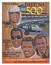 10th Annual 1968 Daytona 500 Canvas 36 x 48 Program Print – Mounted Memories Certified – Original…