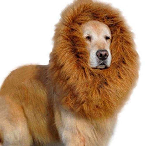 Huge Dog Lion Wigs