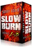 Slow Burn: Box Set 1-3 (Slow Burn Zombie Apocalypse Series) (English Edition)
