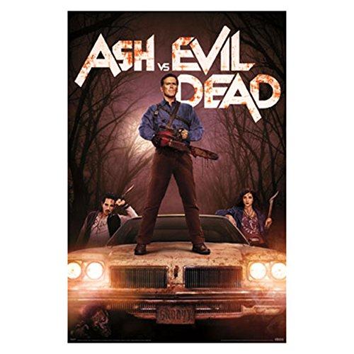 Ash Vs. Evil Dead (22 x 34) Wall Plaque (Silver)