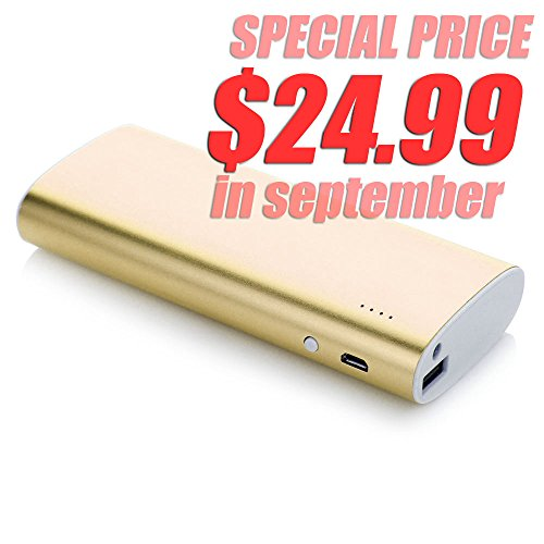 Andream 13000Mah Best Battery Charger With Original Samsung Battery Cell Inside Golden Yl1080209