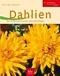 Dahlien: Die sch�nsten Sorten und ihr...