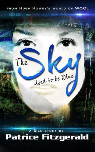 The Sky Used Blue ebook