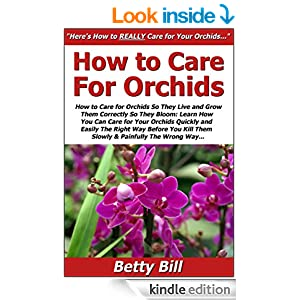 How To Care For Orchids So They Live Grow Them Correctly
