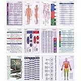 Complete Vertical Badge Card Reference Set Pocket ID Guide Graduation Gift Set