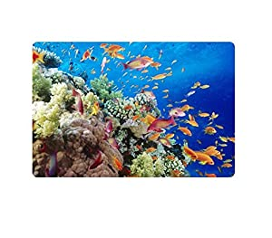 Amazon.com: Dearhouse Fashion Tropical Fish Doormat Living
