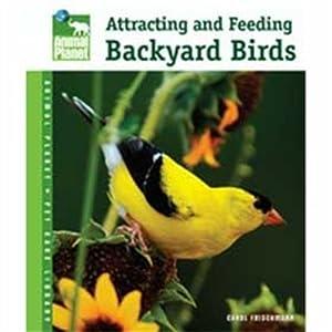 Tfh Nylabone BTFAP037 Animal Planet Backyard Birds