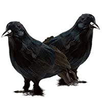 Prextex Realistic Looking Halloween Decoration Birds Black Feathered Crows Halloween Prop Décor (2-pack) by Prextex