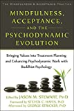Mindfulness, Acceptance, and the Psychodynamic Evolution: Bringing Values into Treatment Planning and Enhancing Psychodynamic Work with Buddhist ... Mindfulness and Acceptance Practica Series)