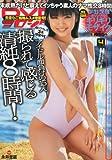 DVD ヨロシク ! 2013年 04月号 [雑誌]