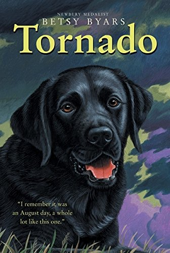Tornado (Trophy Chapter Books (Paperback)) (The Chalk Box Kid compare prices)